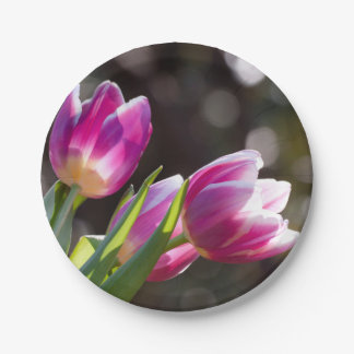 Pink Tulips Bokeh Paper Plate