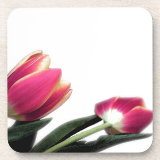 Pink Tulips Coasters