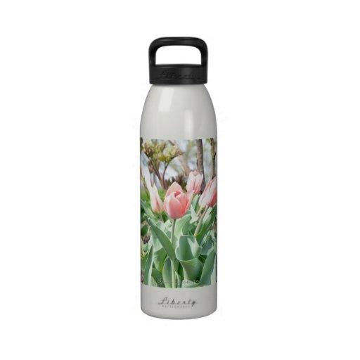 Pink Tulips Drinking Bottles