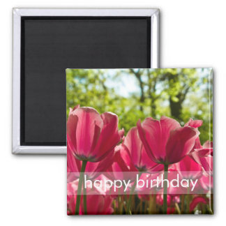 Pink Tulips DSC0847 2 Inch Square Magnet