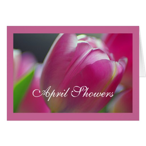 Pink Tulips, floral photography, Greeting Card Greeting Card