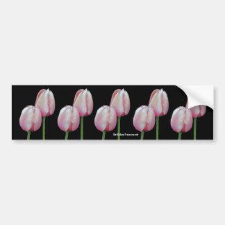 Pink Tulips Flower Photo Bumper Sticker