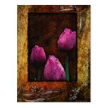 Pink Tulips-Framed Postcard