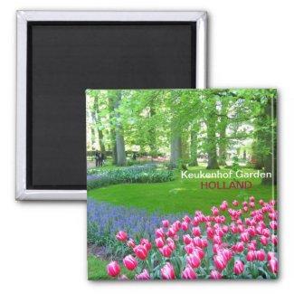 Pink tulips garden magnet