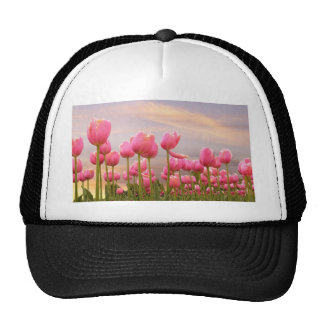 Pink Tulips Trucker Hat