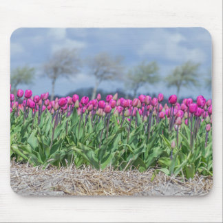 Pink tulips in a field mousepad