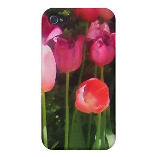 Pink Tulips in Garden iPhone 4 Covers
