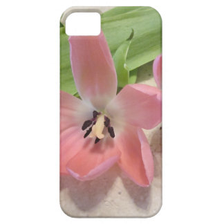 Pink Tulips iPhone SE/5/5s Case