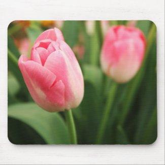 Pink tulips - Mousepad mousepad
