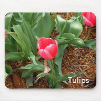 Pink Tulips Mousepad Gifts Computer Spring Flowers