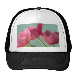 Pink Tulips on Turquoise Trucker Hat