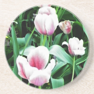 Pink Tulips Picture Drink Coaster
