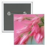 Pink Tulips Pinback Button