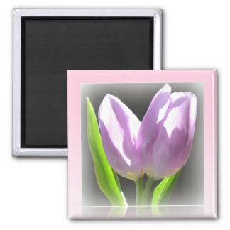 Pink Tulips Reflection Frame Magnet