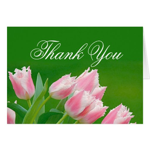 Pink Tulips Thank You Card