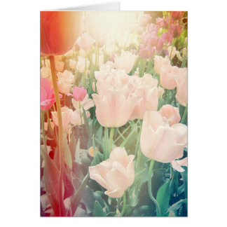Pink Tulips with Light Leaks Card
