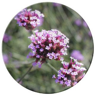 Pink Verbena Flower Sprig Porcelain Plate