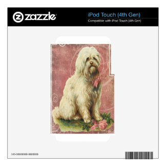 Pink Victorian Vintage White Sheepdog iPod Touch 4G Decal