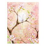 Pink View Blossom Postcard