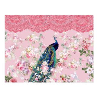 Pink vintage floral elegant lace colorful peacock postcard