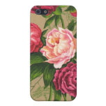 Pink Vintage Roses iPhone Case 4 iPhone 5 Case