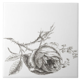 pink vintage style drawing to pencil ceramic tile