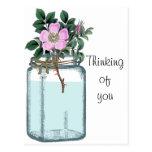 Pink Vintage Wild Rose in Mason Jar Post Card
