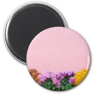 Pink wall refrigerator magnet