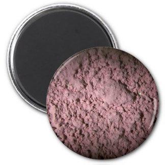 Pink Wall (Shadows) Fridge Magnets
