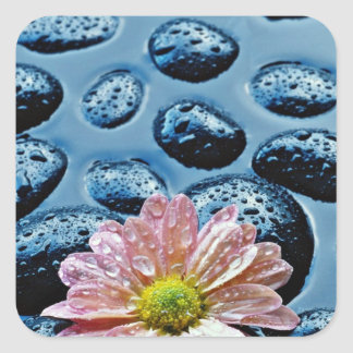 Pink water lily against blue stones  flowers sticker