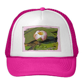 Pink Water-Lily Bud Hat