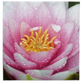 PInk water lily flower Cloth Napkin