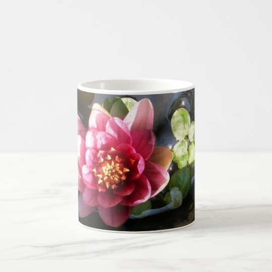 Pink Water Lily Flower Coffee Mug