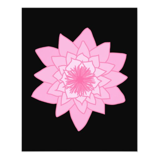 Pink Water Lily Flower on a Black Background. Flyer