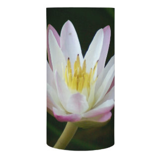 Pink water lily flower, Photo Flameless Candle