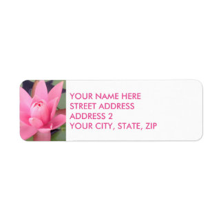 Pink Water Lily Four-Line Return Address Labels