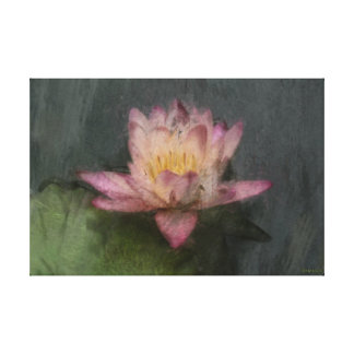 Pink Water Lily in Impressionistic Style Canvas Print