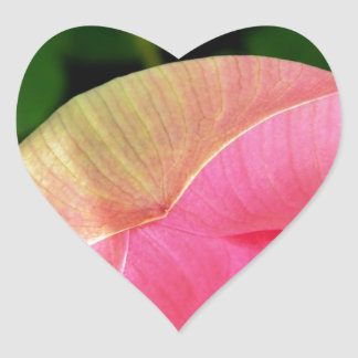 PInk Water Lily Lotus Heart Sticker