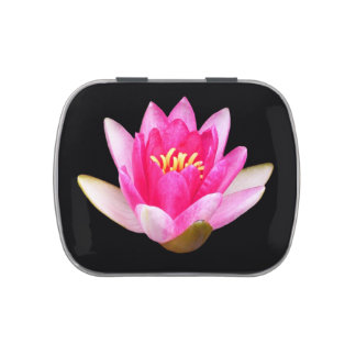 Pink Water Lily on Black Candy Tin