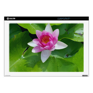 """Pink Water Lily On Green Pads Photography Decal For 17"""" Laptop"""