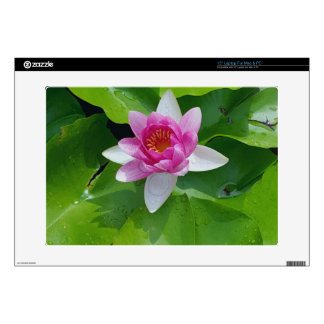 Pink Water Lily On Green Pads Photography Skin For Laptop