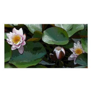 Pink Water Lily Pad Art Print