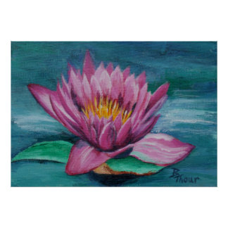 Pink Water Lily Poster Print