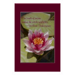 Pink Water Lily Posters