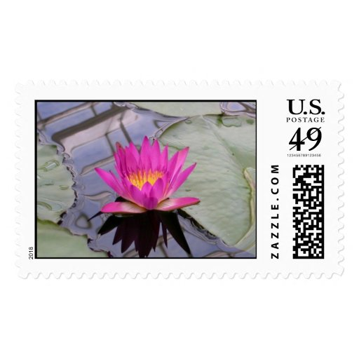Pink Water Lily Stamp