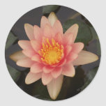Pink Water Lily v1 Sticker