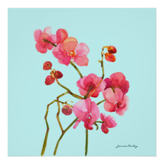 Pink Watercolor Blossoms Poster