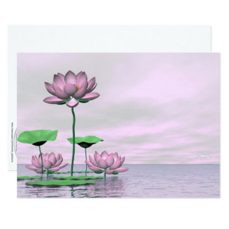 Pink waterlilies and lotus flowers - 3D render Card