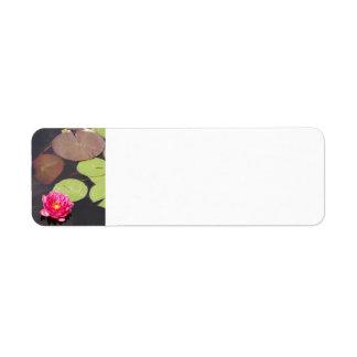 Pink Waterlily address label
