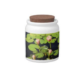 Pink Waterlily Buds Candy Jar